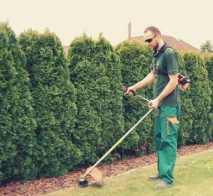 Nuran Sadiku - Gartenpflege Sadiku aus Gänserndorf